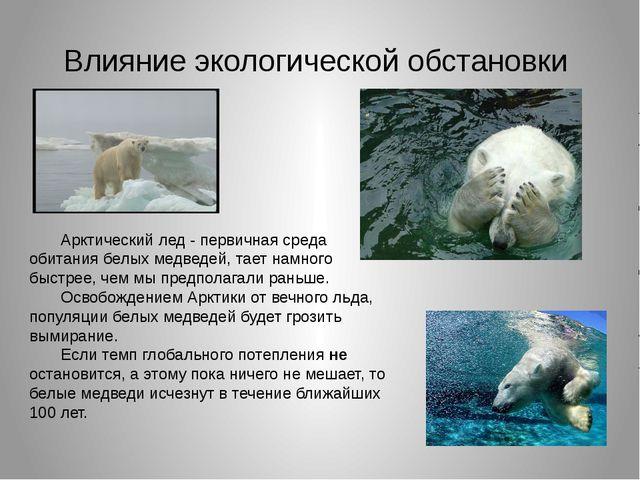 Влияние экологической обстановки Арктический лед - первичная среда обитания б...
