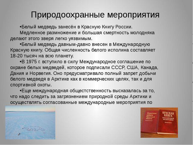 Природоохранные мероприятия Белый медведь занесён в Красную Книгу России. Мед...