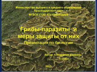 Министерство высшего и среднего образования Краснодарского края МГБОУ СОШ 43