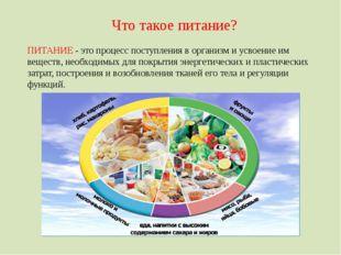 Что такое питание? ПИТАНИЕ - это процесс поступления в организм и усвоение им