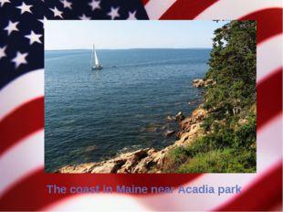 The coast in Maine near Acadia park