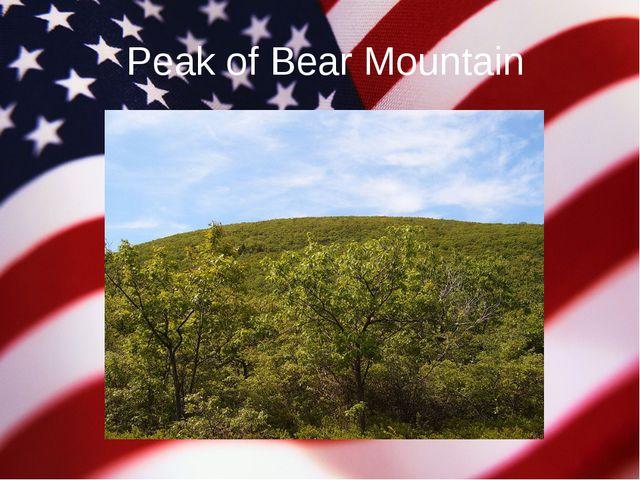 Peak of Bear Mountain