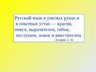 Русский язык в умелых руках и в опытных устах — красив, певуч, выразителен, г