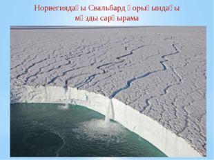 Норвегиядағы Свальбард қорығындағы мұзды сарқырама