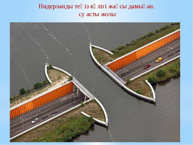 Нидерланды теңіз көлігі жақсы дамыған. су асты жолы