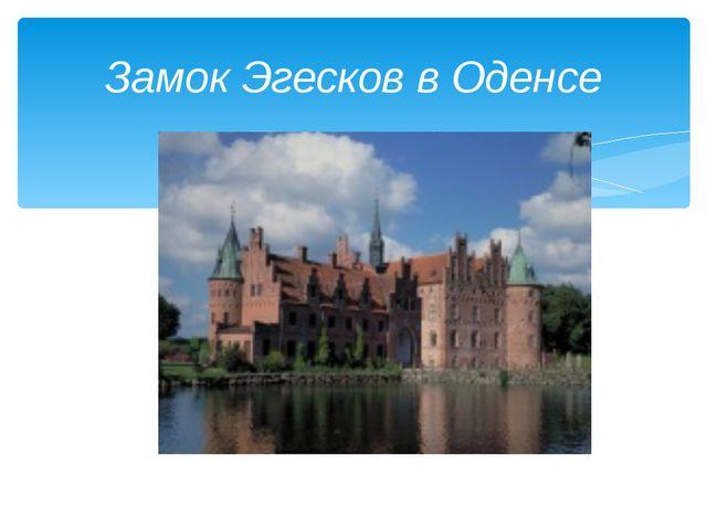 Замок Эгесков в Оденсе