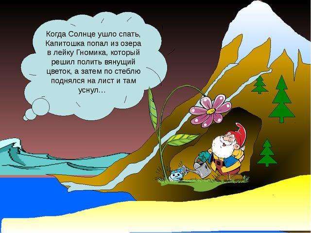 Когда Солнце ушло спать, Капитошка попал из озера в лейку Гномика, который р...