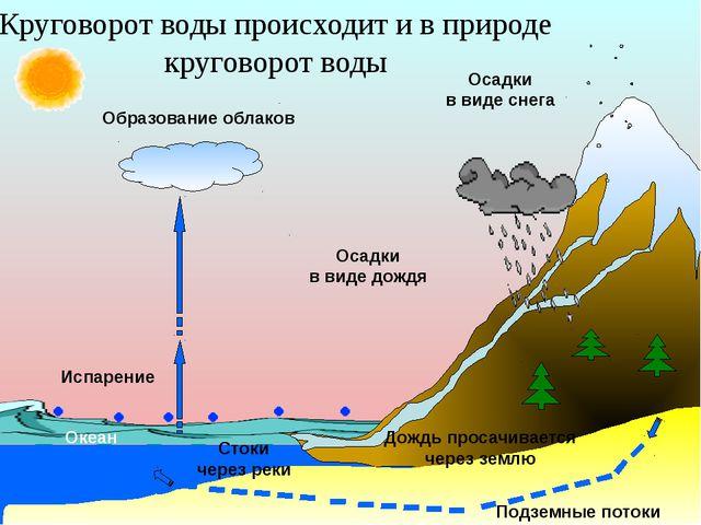 Осадки в виде снега Образование облаков Осадки в виде дождя Дождь просачивае...