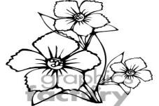 C:\Users\айзада\Desktop\Новая папка\1348600-45-flowers-bw.jpg