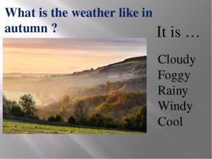 Cloudy Foggy Rainy Windy Cool What is the weather like in autumn ? It is …