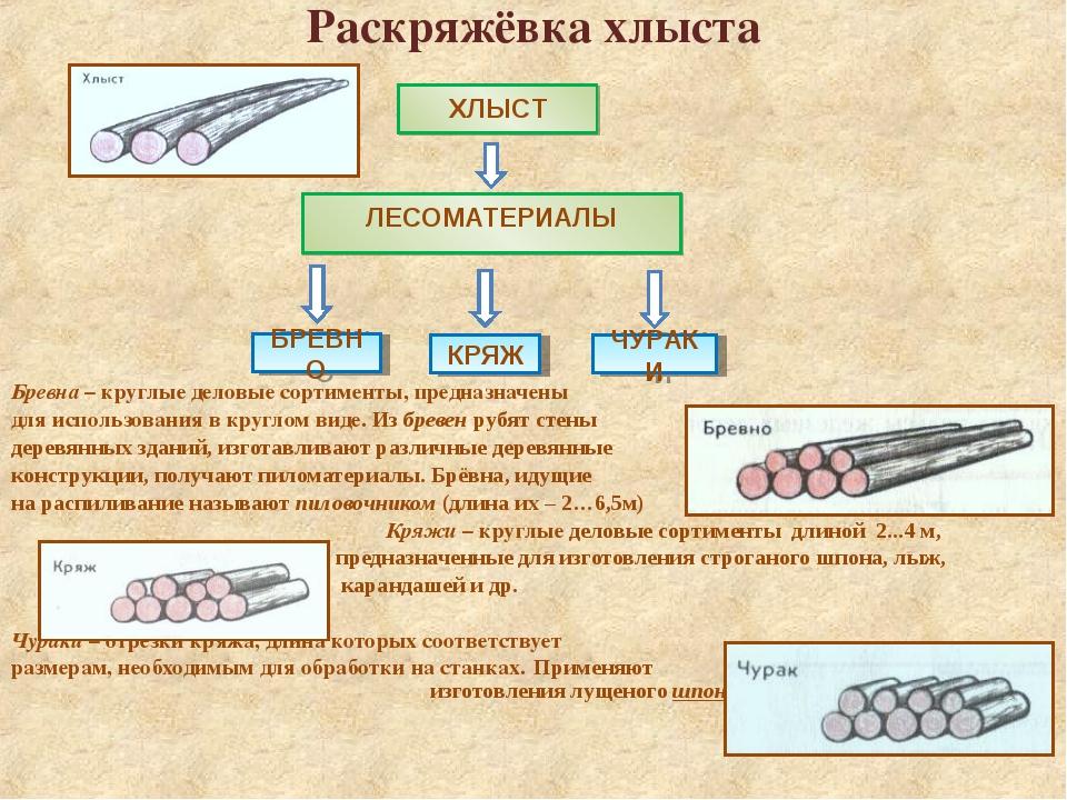 Раскряжёвка хлыста Бревна – круглые деловые сортименты, предназначены для исп...