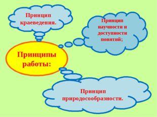 Принципы работы: Принцип научности и доступности понятий; Принцип краеведения