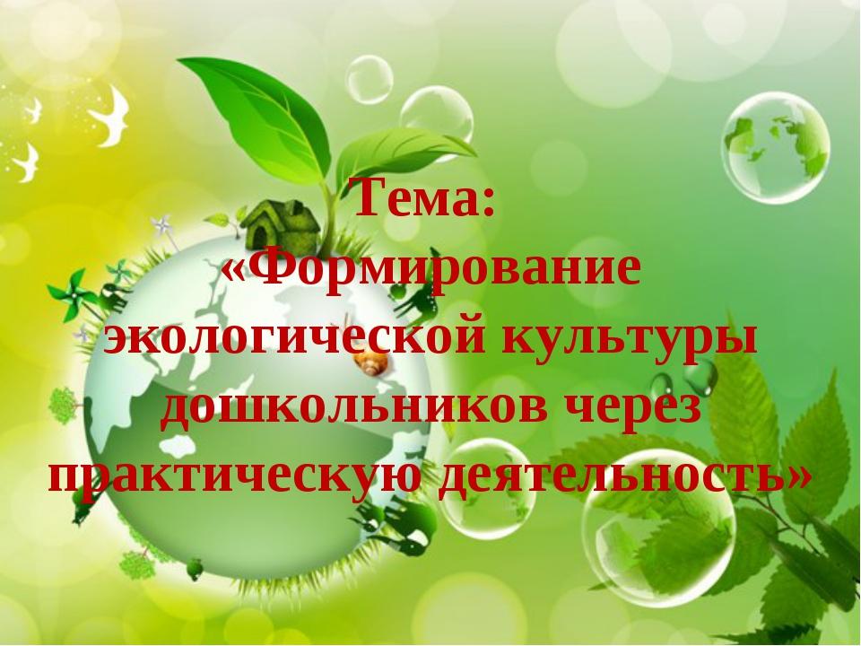 Тема: «Формирование экологической культуры дошкольников через практическую де...