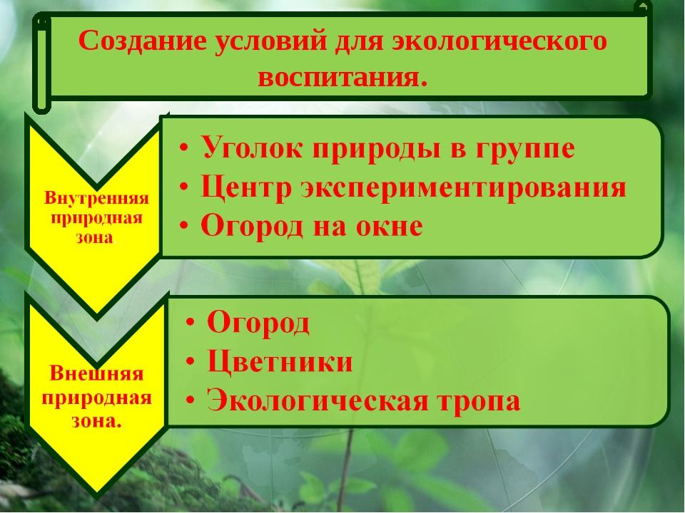 Создание условий для экологического воспитания.