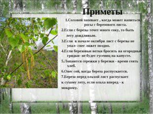 Приметы 1.Соловей запевает , когда может напиться росы с березового листа. 2.
