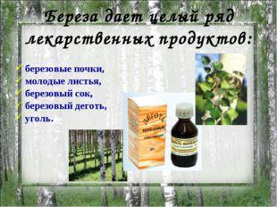 березовые почки, молодые листья, березовый сок, березовый деготь, уголь. Бер