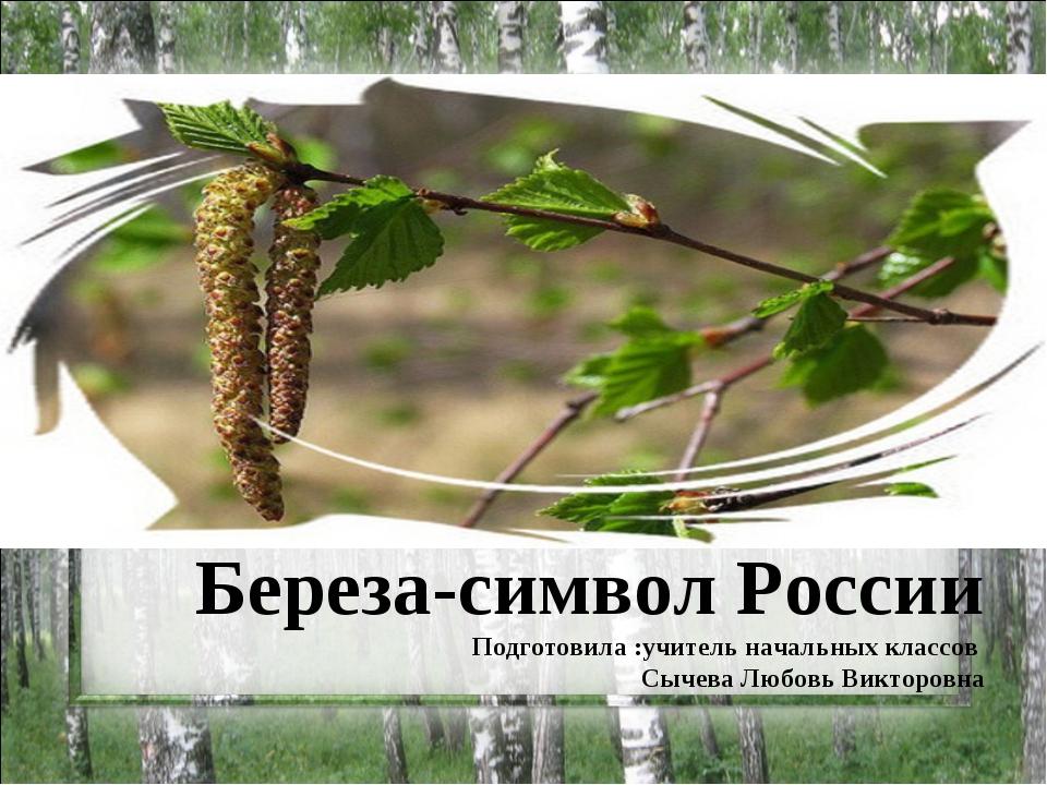 Береза-символ России Подготовила :учитель начальных классов Сычева Любовь Вик...
