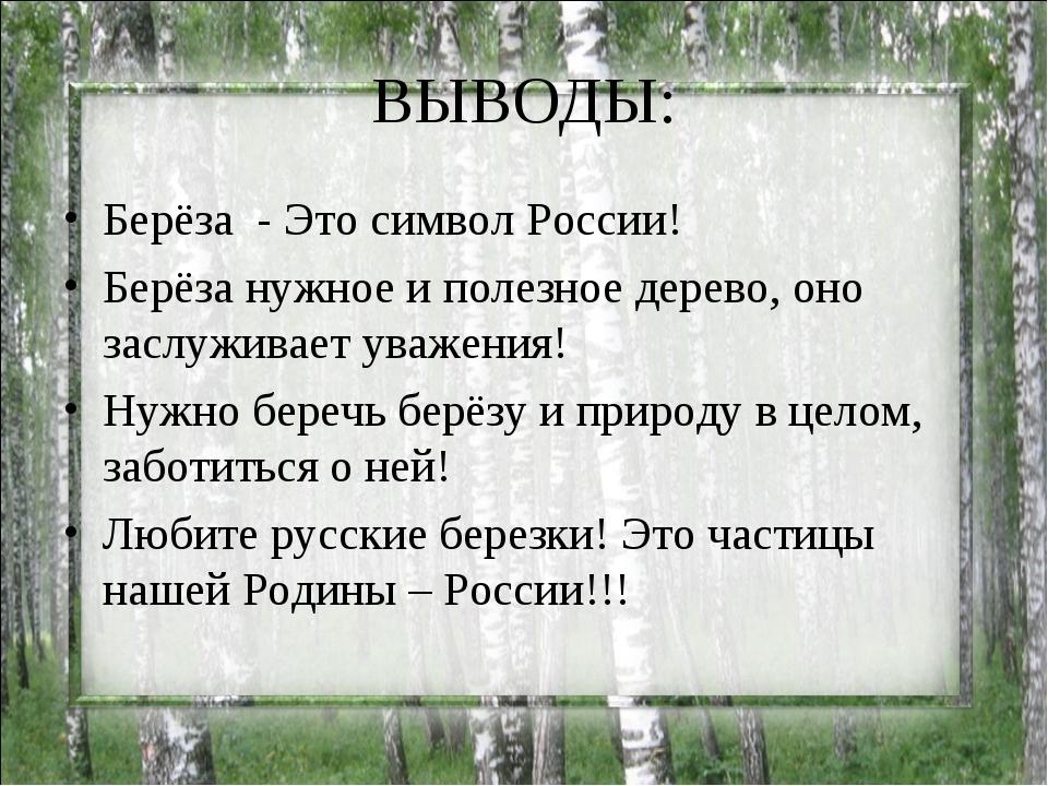 ВЫВОДЫ: Берёза - Это символ России! Берёза нужное и полезное дерево, оно засл...