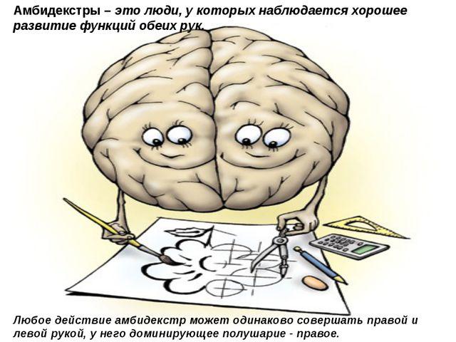 Амбидекстры – это люди, у которых наблюдается хорошее развитие функций обеих...