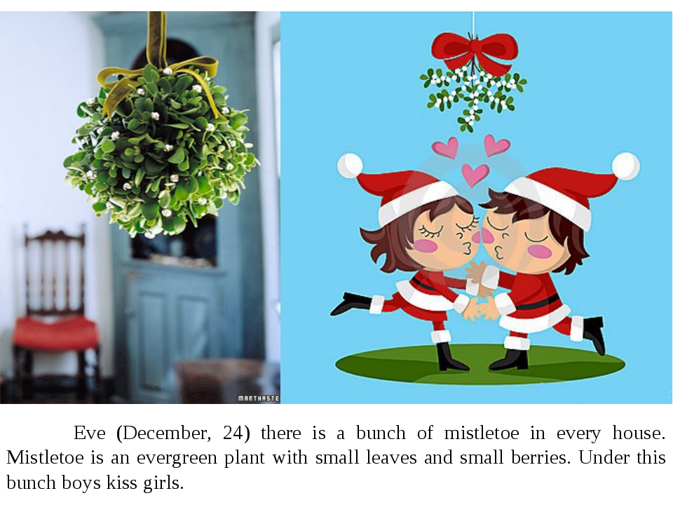 Eve (December, 24) there is a bunch of mistletoe in every house. Mistletoe i...