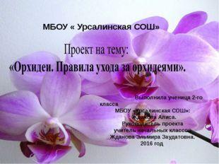 Выполнила ученица 2-го класса МБОУ «Урсалинская СОШ»: Жданова Алиса. Руковод