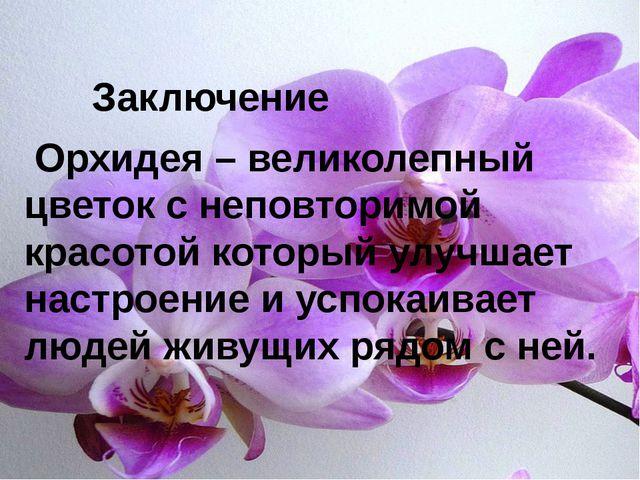 Орхидея – великолепный цветок с неповторимой красотой который улучшает настр...