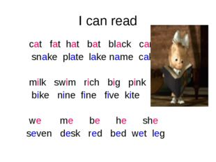 I can read cat fat hat bat black can snake plate lake name cake milk swim ric