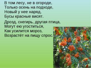 В том лесу, не в огороде, Только осень на подходе, Новый у нее наряд, Бусы к