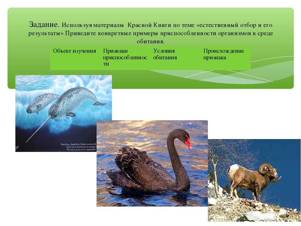 Задание. Используя материалы Красной Книги по теме «естественный отбор и его...