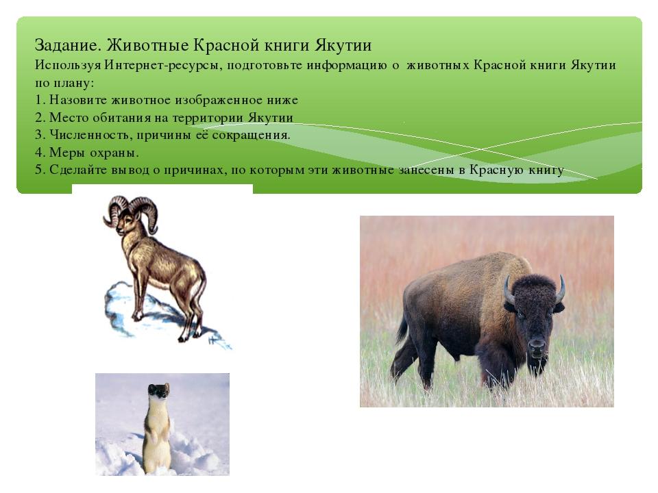 Задание. Животные Красной книги Якутии Используя Интернет-ресурсы, подготовьт...