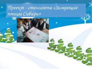 Проект - стенгазета «Зимующие птицы Сибири»