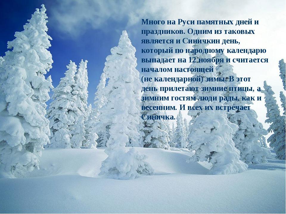 Много на Руси памятных дней и праздников. Одним из таковых является и Синички...