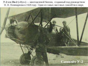 Самолёт У-2 У-2 или По-2 («Мул»)— многоцелевой биплан, созданный под руковод
