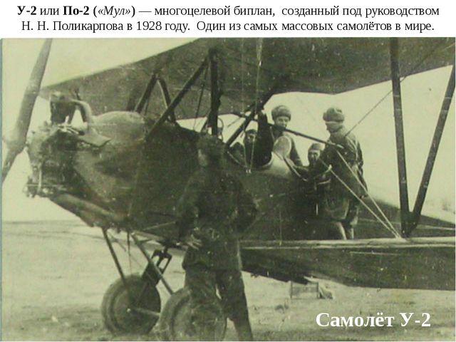 Самолёт У-2 У-2 или По-2 («Мул»)— многоцелевой биплан, созданный под руковод...
