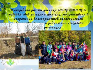 В очередной раз мы ученики МБОУ СОШ № 37 поведём свой рассказ о том как мы