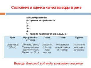 Состояние и оценка качества воды в реке Шкала оценивания: 0 – признак не проя
