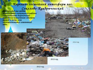 Третий год мы ведём мониторинг ситуации в районе Соколовского Кирпичного заво