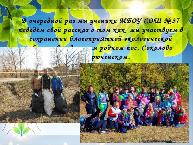 В очередной раз мы ученики МБОУ СОШ № 37 поведём свой рассказ о том как мы...