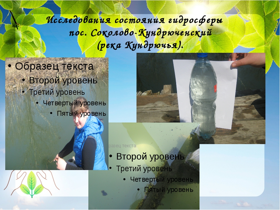 Исследования состояния гидросферы пос. Соколово-Кундрюченский (река Кундрючья).
