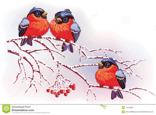 http://thumbs.dreamstime.com/z/birds-branches-17010862.jpg