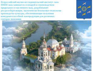 Всероссийский научно-исследовательский институт льна ВНИИ льна занимается сел