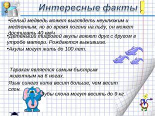 Таракан является самым быстрым животным на 6 ногах. Белый медведь может выгля
