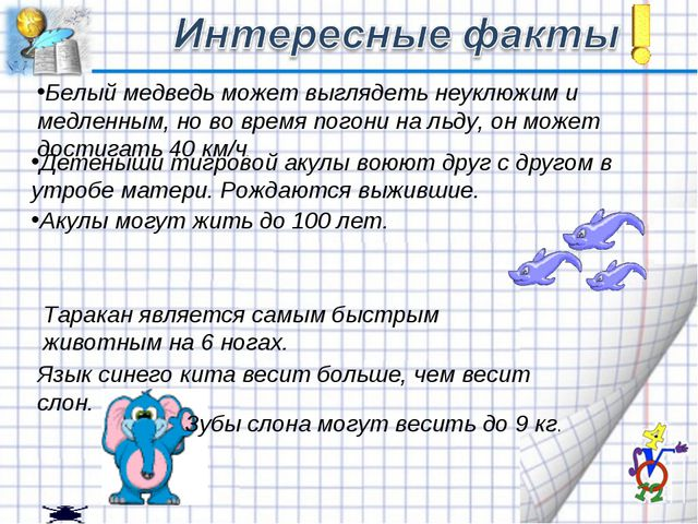 Таракан является самым быстрым животным на 6 ногах. Белый медведь может выгля...