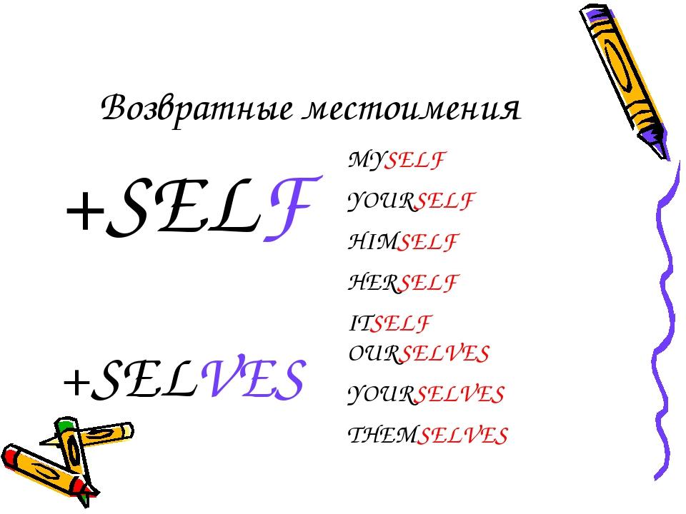 Возвратные местоимения +SELFMYSELF YOURSELF HIMSELF HERSELF ITSELF +SELVESO...