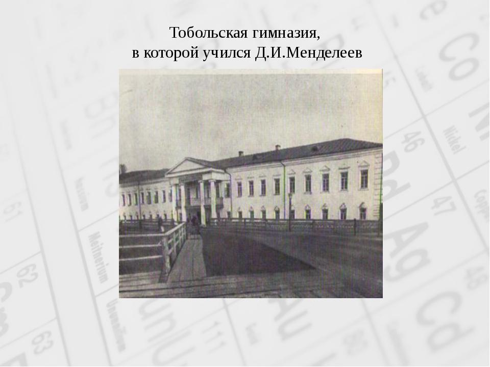 Тобольская гимназия, в которой учился Д.И.Менделеев