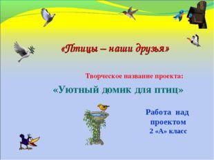 Творческое название проекта: «Уютный домик для птиц» «Птицы – наши друзья» Ра
