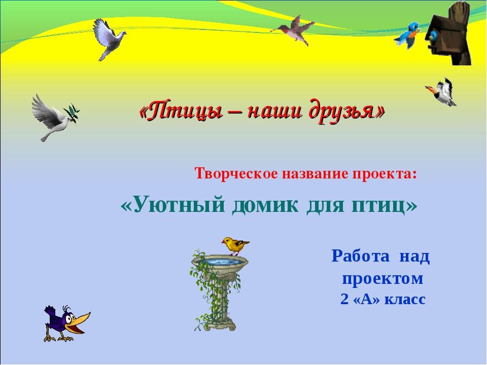 Творческое название проекта: «Уютный домик для птиц» «Птицы – наши друзья» Ра...