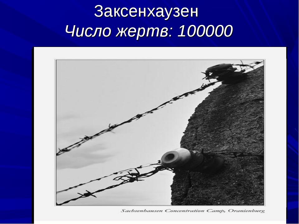 Заксенхаузен Число жертв:100000