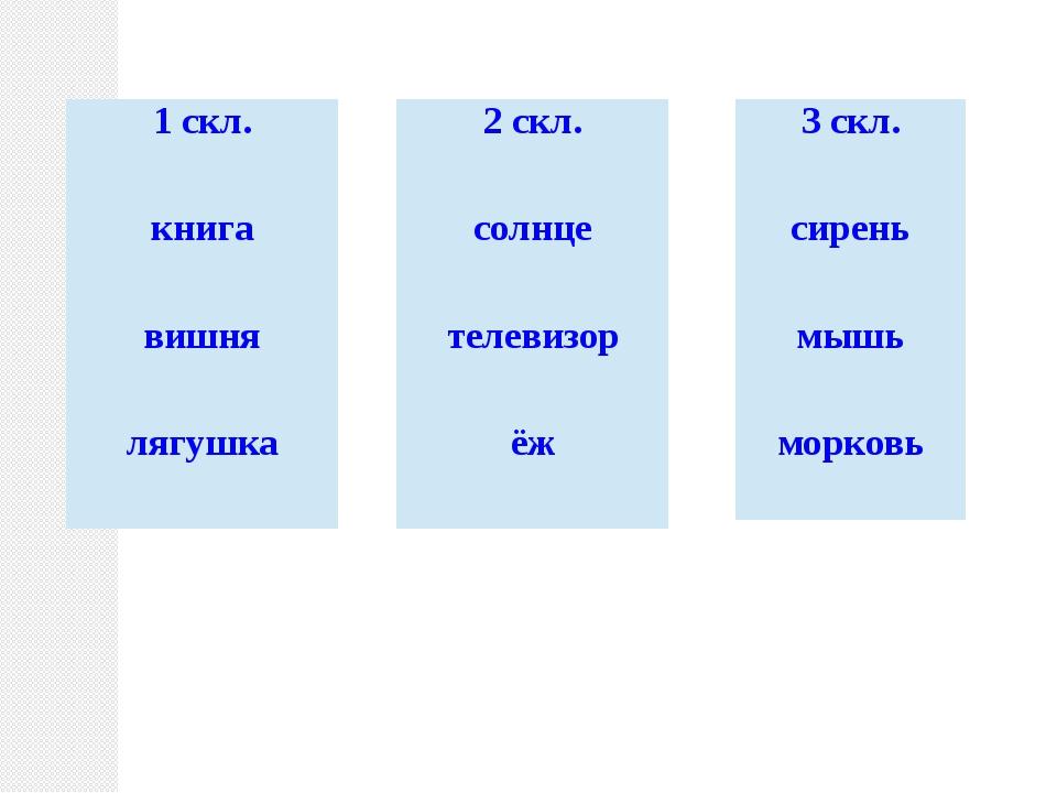 . Творительный падеж имён существительных 3 склонения единственного числа .