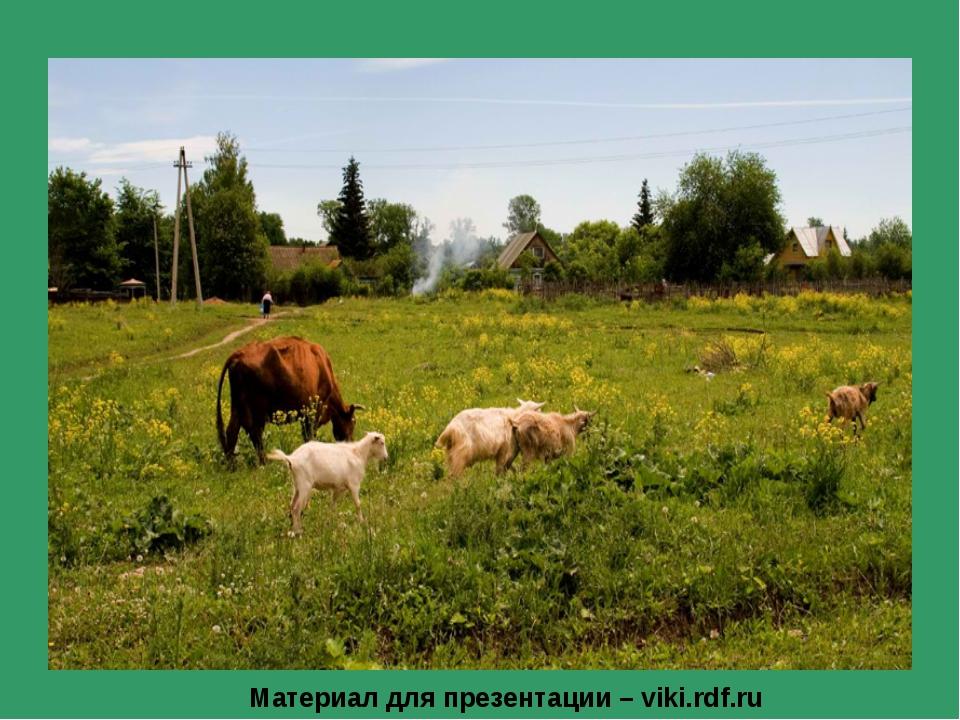 Материал для презентации – viki.rdf.ru